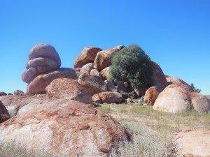Day 7 : Aileron - Devils Marbles - Tennant Creek - Camooweal : 845 km dans 3. Le Red Centre : Uluru, Kata Tjuta, Devils Marbles dscn2506-300x225