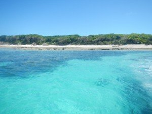 dscn86455-300x225 dans 5. The Great Barrier Reef